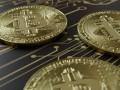 Названы лучшие страны для криптобизнеса