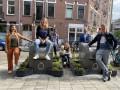В Амстердаме сажают клумбы вокруг мусорок