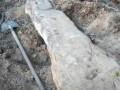 В Винницкой области трактористы нашли древнюю стеллу