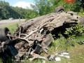 В Сумской области при попытке сбежать на авто от патрульных погибли беременная девушка и парень