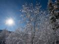 Сегодня - день зимнего солнцестояния