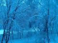 За последние дни погода в Украине побила несколько рекордов