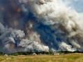 Полиция считает, что лес на Луганщине могли поджечь намеренно