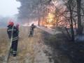 Главное 1 октября: Больше погибших при пожарах и вирусный антирекорд