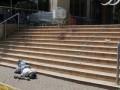 МИД сообщает, что украинцы не пострадали во время теракта в Кении