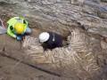 ВБельгии обнаружили стены изчеловеческих черепов икостей