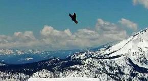 Сноубординг: Покоряя огромный кикер