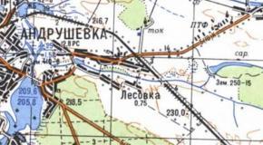 Карта село Лесовка (Лясовка), Андрушевский район, Житомирская область, Украина, 1987г.