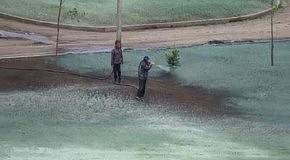 Идолопоклонничество в России: к приезду Путина в Саранске покрасили пустырь под цвет газона