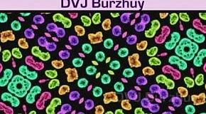 Filthy Rich  James Fitch  DVJ Burzhuy - Lesson One (Gabriel & Castellon Mix)