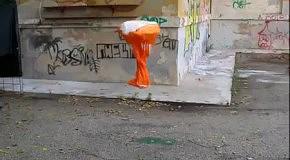 Эволюция жизни в граффити