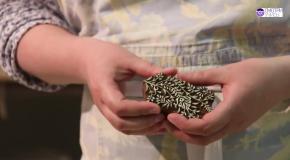 Нанесение рисунка на ткани и глину штампами - Видеокурс