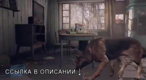 Fallout 4 ������ ����