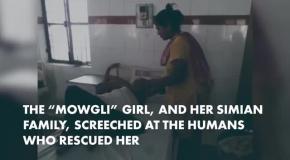 В Индии нашли девочку-Маугли
