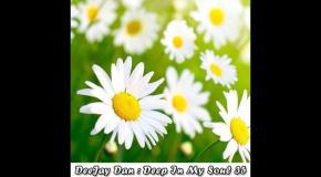 DeeJay Dan - Deep In My Soul 35 [2017]