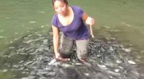 Стая голодных рыб окружила женщину