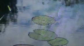EXHIBITION ON SCREEN I, Claude Monet