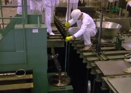 Вгосударстве Украина будут производить ядерное горючее