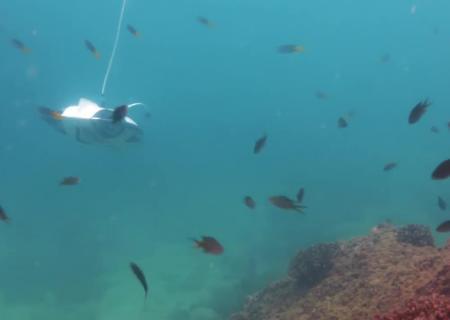 В США представили робот-беспилотник для рыбалки