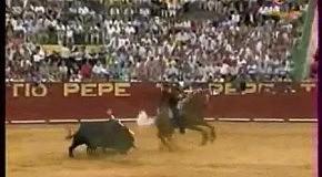 Конь Мерлин
