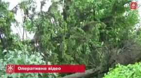 Наслідки урагану в Андрушівському районі (2013)