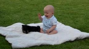 Схватка малыша и собаки