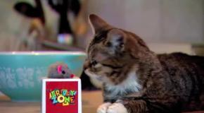 Лил Баб в шоу  FRIDAY ZONE