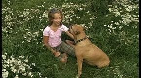 Дитина і тварина