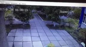 Видео похищения ребенка