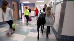 Огромный пес помогает больной девочке