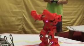 Бокс роботов