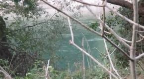 Короткометражный фильм прогулка по реке в лесу