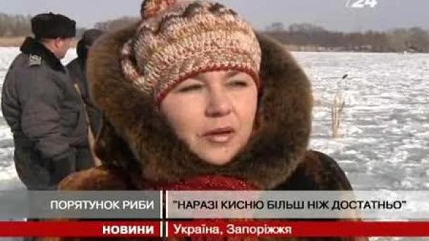 Михалкова В Прозрачной Блузке