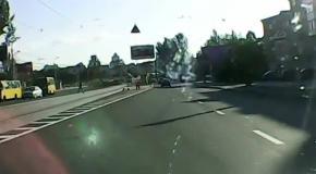 Баран на дороге