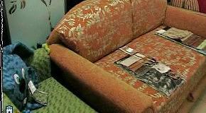 Бизнес Житомира (1): Магазин мебели Кедр