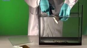 Режем стекло ножницами - физические опыты