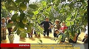 Потоп и Ющенко
