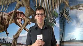 NewCa.com: Ultimate Dinosaurs: Final Installation of Giganotosaurus and Tyrannosaurus rex