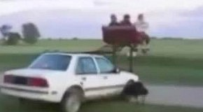 Авто-аттракцион
