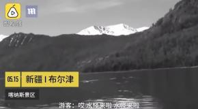 В китайском озере засняли загадочное существо