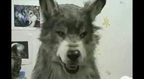 Очень реалистичная маска волка