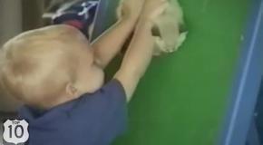 ТОП 10: Смешные дети и кошки.