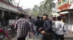 В Индии ловили леопарда всем городом