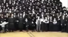 Ой вей! ой вай! ой гевальд! Танцуем вместе.