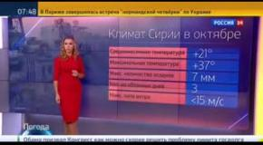 Прогноз погоды на канале Россия 24: в Сирии солнечно, можно бомбить!