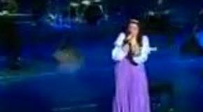 Отличный Новый Год - Концерт Елены Ваенги