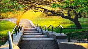 Эдвард Симони  - Путь к свету