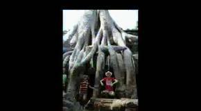 Восьмое чудо света - Камбоджа-Анкор