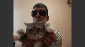 кот исцелитель стоит 4млн.руб нтв