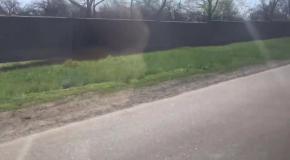 Блогер из Днепра сняла видео о поездке в ДНР